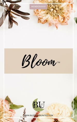 BLOOM-Membership-Overview-2018-dried-flowers